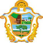 Brasão Manaus
