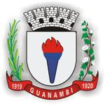 Brasão Guanambi