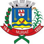 Brasão Muriaé