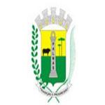 Brasão Palmas