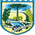 Brasão Joaçaba
